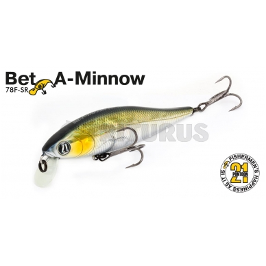 Bet-A-Minnow 3