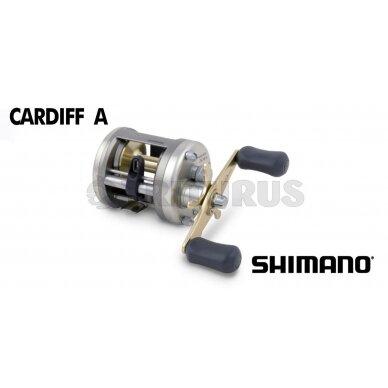 Cardiff A 2