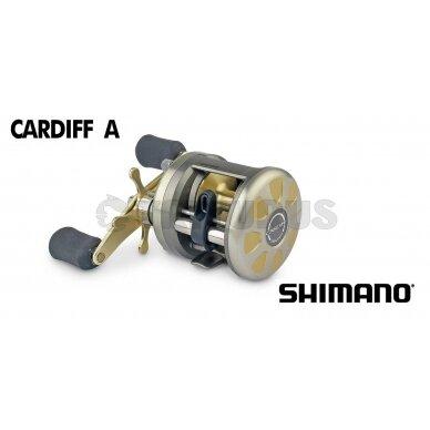 Cardiff A 3