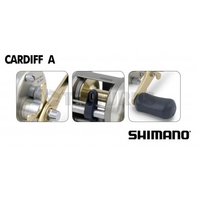 Cardiff A 4