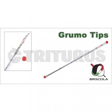 GRUMO 5