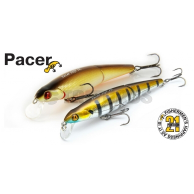 Pacer 2