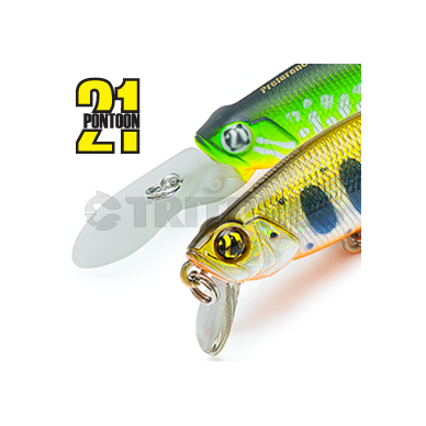 Preference Shad SP