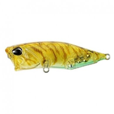 Realis Popper 64 SW LIMITED 5