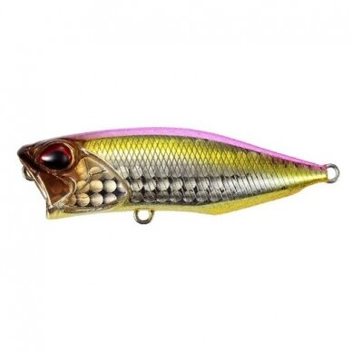 Realis Popper 64 SW LIMITED 4