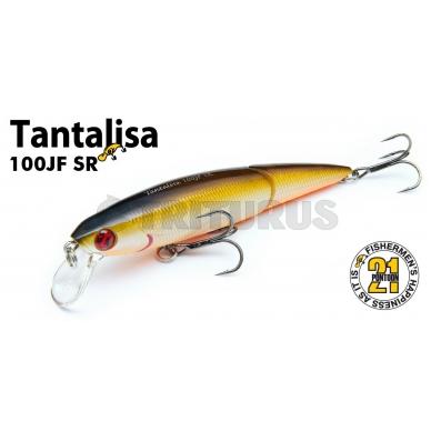Tantalisa 5