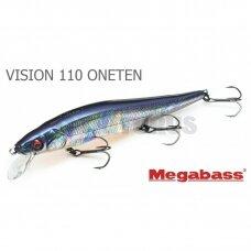 VISION 110 ONETEN
