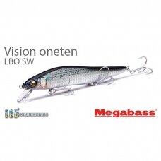 Vision ONETEN LBO SW